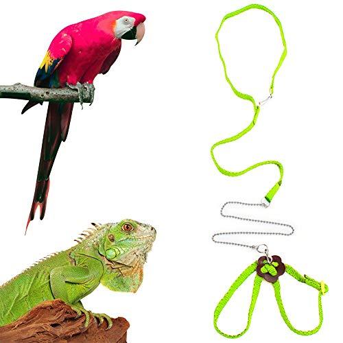 Sawyd Adjustable Reptile Lizard Harness Leash,Turtle Lizard Pet Traction Belt Bearded Dragon Accessories Soft Small Pet Animal Harness Rope -1.2M (Green)