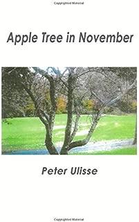 Apple Tree in November