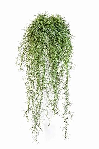 artplants.de Künstliche Tillandsia Usneoides Ranke IRMENA, 115 Zweige, grün, 80cm - Ranke künstlich - Deko Pflanze