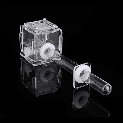 ExcLent Mini Glass Tube Nest Housing Ameisenfarm Formicarium Mit Fütterung Für Ameisenkolonie