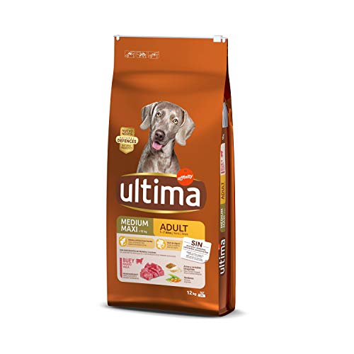 Ultima Pienso Perros Medium-Maxi Adulto Buey - 12