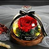 XIANNVV Rose Dome Lights, Beauty and The Beast Eternal Rose Decoration, LED Warm Light Rose Glass Dome para mujeres Regalos para el día de la madre