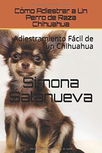 Cómo Adiestrar a Un Perro de Raza Chihuahua: Adiestramiento Fácil de un Chihuahua