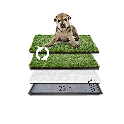 Best for Dogs: HQ4us Dog Grass pad with Tray Large Dog Litter Box