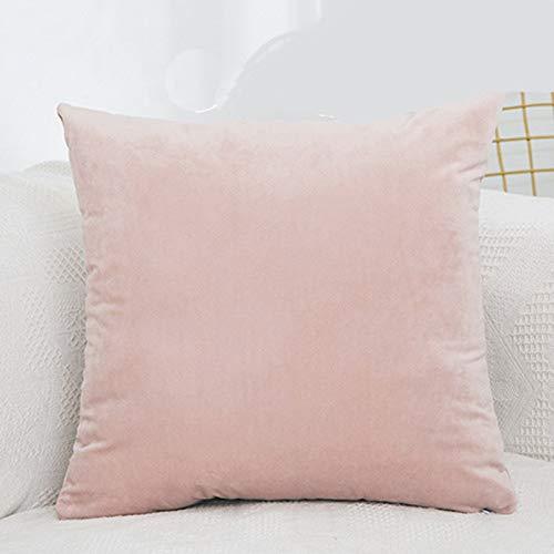 Blankspace Fundas de almohada decorativas de terciopelo, fundas de cojín de verano, 1 unidad, decoración del hogar, sofá, sala de estar (color: rosa claro, tamaño: 40 x 40 cm)