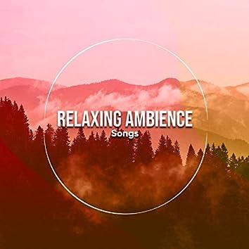 14 Canciones de Ambiente Relajante para Practicar la Calma