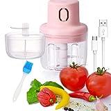 Holzsammlung 250ML Mini Picador de Alimentos Eléctrico Recargable Molinillo de Ajo con 1 Cuchillas y 100ML Taza de Repuesto, para Carne, Verduras, Frutas, Nueces, Cebollas, Ajo, Jengibre