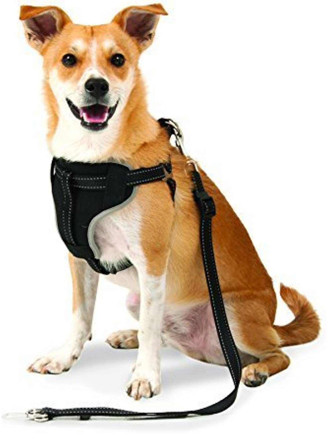 Petmate 11477 The Ultimate Travel Harness for Pets, Medium, Black by Doskocil