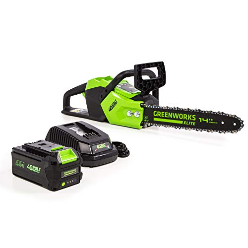 Greenworks 14-Inch 40V Brushless Cordless Chainsaw