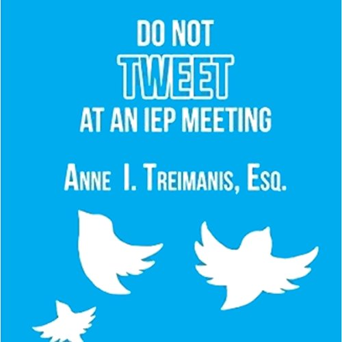 Do Not Tweet at an IEP Meeting cover art