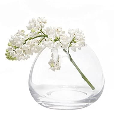 Chive - George Shape 3, Unique Clear Glass Flower Vase, Small and Elegant Oval Bud Vase, Decorative Floral Vase for Home Decor Office Place Settings, Bulk Set of 6