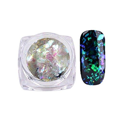 Familizo Nail Art Gorgeous Mirror Poudre Paillettes de Chrome Manucure, Poudre de Nuage de Patch Grossier de Couleur D'ongle (Multicolore, B)