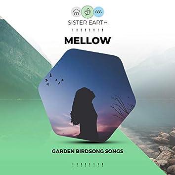 ! ! ! ! ! ! ! ! Mellow Garden Birdsong Songs ! ! ! ! ! ! ! !