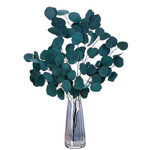 HBSTK Flores secas de eucalipto, eucalipto Duradero, Flores de Flores eternas, Planta Natural Pura, Hoja Redonda, decoración del hogar y Flores secas, eucalipto (Verde Azulado)