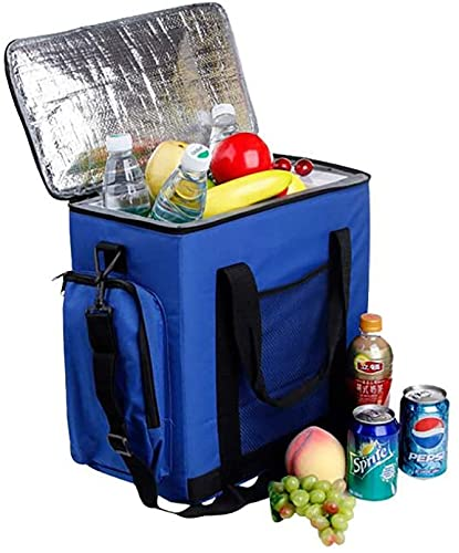 TANKKWEQ Coche de 14L para Enfriador y Calentador Compacto y portátil para Viajes de automóviles, Camping, Pesca 15.559.2516.06 Pulgadas