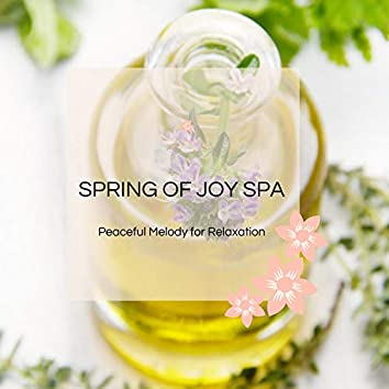 Spring Of Joy Spa - Peaceful Melody For Relaxation