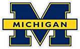 University of Michigan Vinyl Decal Wall Art //Any-Size//Football Michigan Wolverines Car Bumper Stickers (3'x5')