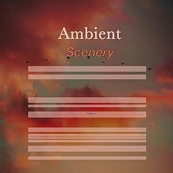 # 1 Album: Ambient Scenery