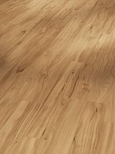 Parador Laminat Basic 400 - Apfel Bernstein - Hochwertiger Laminatboden mit Klick-Verbindung - Set mit 10 Dielen im Paket = 2,49 m²
