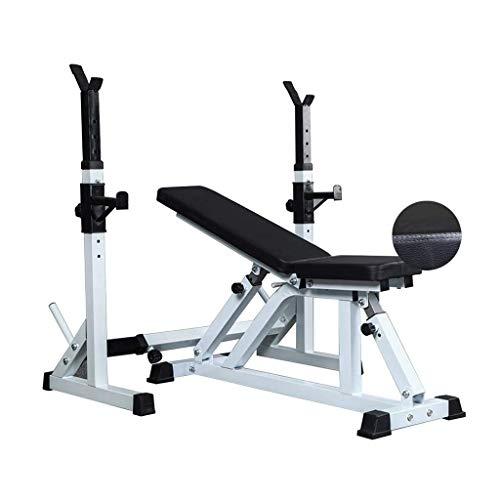 DSHUJC Hantelbank Gewicht Tisch Squat Rack Inland Rückenplatte Multifunktionale Bauchplatte Verstellbarer Bankdrücken-Ständer (Farbe: Schwarz)