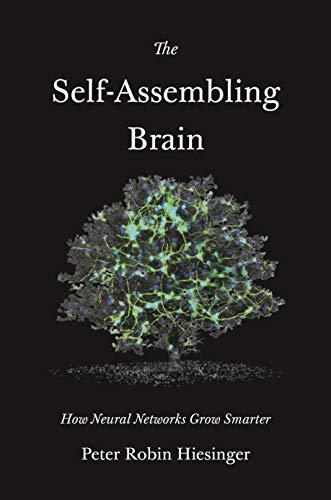 The Self-assembling Brain: How Neural Networks Grow Smarter