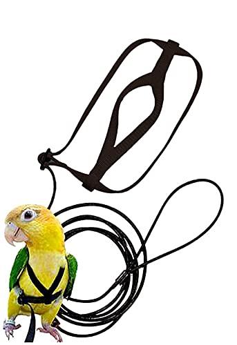 Bird Harness, Leash Bird, Parrot Harness and Parrot Leash...