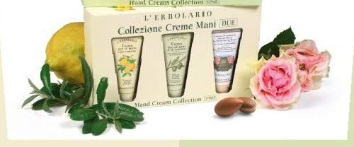 10 Pack Plant Fragrance Hand Cream, Moisturizing Hand Lotion Travel Size Gift Set With Shea Butter Natural Aloe and Vitamin E For Men and Women,