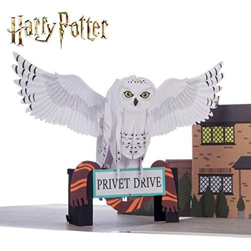 Harry Potter Verjaardagskaart | Hedwig Pop Up Card | Inclusief Zweinsteinse envelop & notitiekaart voor je bericht | Officieel gelicenseerd door Cardology