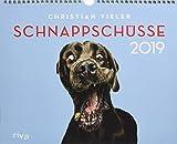 Schnappschüsse 2019: Wandkalender