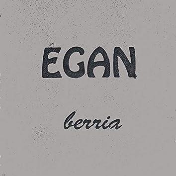 Egan berria