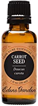 Edens Garden Carrot Seed Essential Oil, 100% Pure Therapeutic Grade (Highest Quality Aromatherapy Oils- Eczema & Skin Care), 30 ml