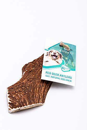 Deer Split Antler chews for dogs - made from natural, carefully selected deer antler, rich with protein and minerals (XL size, 111-150g)