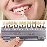 STSE 16 Colores Guía Dental del Modelo de Color de Sombra, Dientes 3D Profesionales Whitening Materiales de Seguimiento Carta de Color Oral Care Herramientas del Dentista