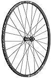 DT Swiss Unisex - VR X1900 Spline DB - Rueda de Ciclismo, Color Negro, Talla única