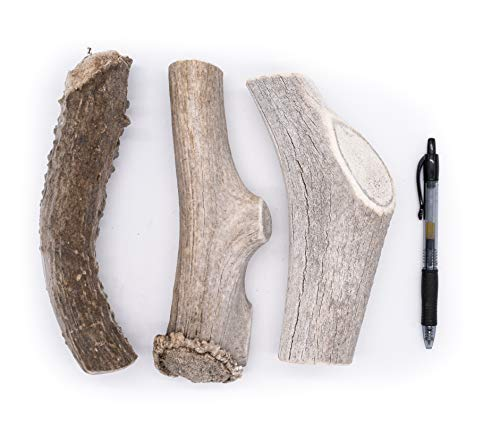 Perfect Pet Chews - Economy Deer Antler Dog Chews - Grade B-C, Organic Dog Treats, Organic Dog Chews Naturally Shed Deer Antlers in The USA - 3-Count (G. Mega - Dog Weight 100+Lbs)