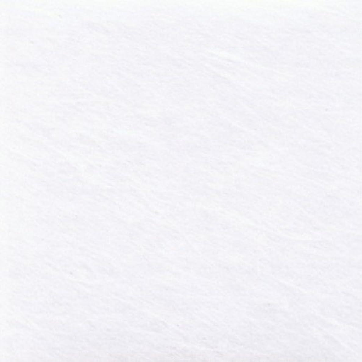 広告空いているランチョンOP雲流シートOPU-21 12cm角 ホワイト 100枚入 【 敷紙 】 【 飲食店 定食屋 旅館 和食器 業務用 】