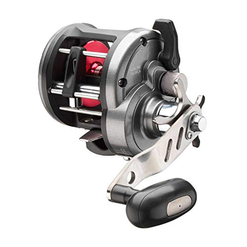 Daiwa Sealine 30LWLA Linkshand Multirolle