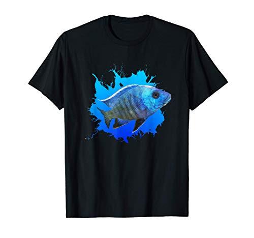 Buntbarsch Azurcichlide Sciaenochromis ahli Eisberg T-Shirt