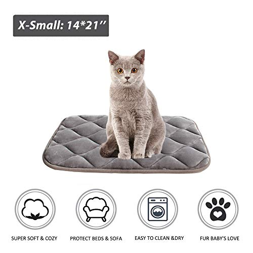 furrybaby Dog Bed Mat Crate Mat with Anti-Slip Bottom Machine Washable Pet Mattress for Dog Sleeping (XS 21x14'', Sliver Grey Mat)