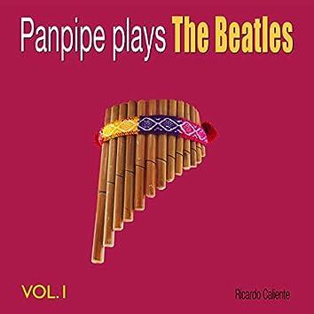 Panpipe Plays the Beatles, Vol. 1