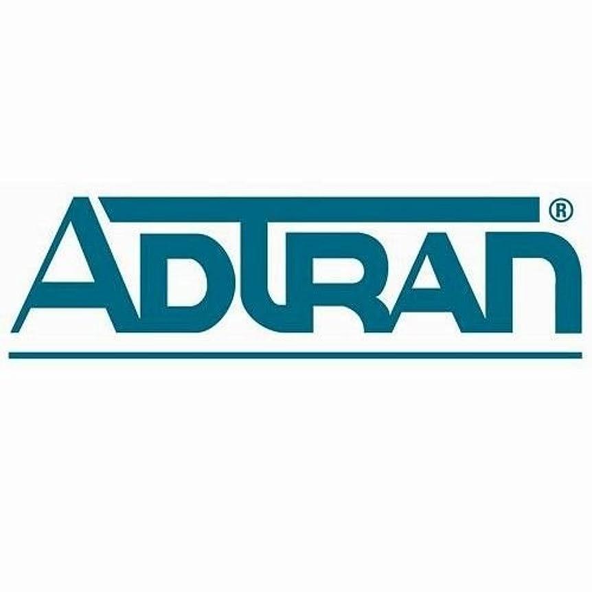 物足りない干渉する孤独なAdtran , Inc。Adtran?–?合計アクセス904?4?FXS dsx-1?IPルータSupports Voip Apps Using Sip 4212904l1