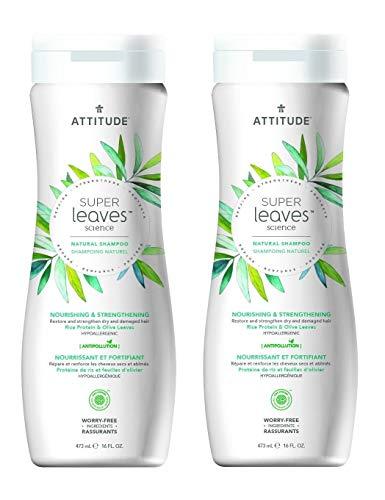 Attitude Natural Shampoo - Nourishing & Strengthening, 16 Fl Oz (Pack of 2)