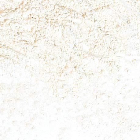 Arcilla blanca (Caolín) - 1000gr - 1000gr