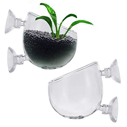 2 pièces Pot de Tasse en Verre de d'Aquarium, Support...