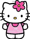2019 Calendar Planner: Hello Kitty Cover,Gift Log,2019 Planner,Organizer Planner.