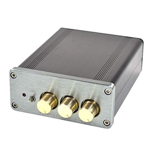 Wnuanjun 1 stück autoverstärker Stereo Sound Lautsprecher amp ne5532 dac tpa3116 HiFi Class d vorverstärker digital 100w * 2 verstärker Audio Thermometer (Farbe : Sliver)