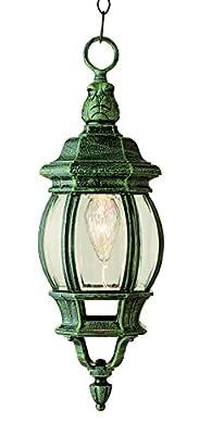 """Outdoor 20.5"""" Hanging Lantern"""