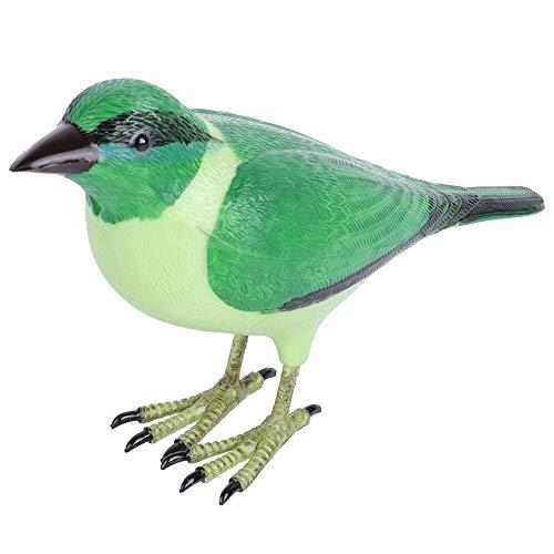 KASD Timbre De Puerta, único En Forma De Pájaro, No Tóxico Y Ecológico, Conveniente para Instalar Un Lindo Timbre De Puerta con Forma De Pájaro para Patio, Hogar, Tienda