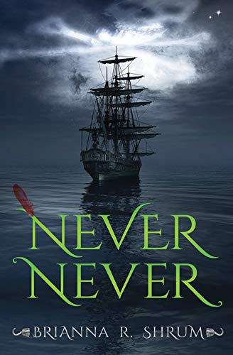 Never Never by [Brianna Shrum]