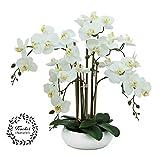 Ligne Déco | Orchidée Blanche Artificielle | 55cm | Fête des mères | Toucher réel | 6 Branches | Coupe céramique Blanche | Composition Fleurie Artificielle | Décoration d'intérieur Maison